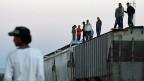 MigrantInnen aus Zentralamerika versuchen, auf einem Güterzug Mexiko zu durchqueren. Die Kosten für die Reise sind der Mafia zu entrichten.
