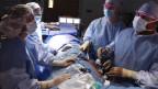 Soll die automatische Organspende eingeführt werden?