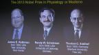 Die drei Medizin-Nobelpreisträger 2013.