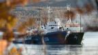 Der Internationale Seegerichtshof setzt auf die Basispunkte «Freiheit der Hohen See» und auf die «Menschenrechte».