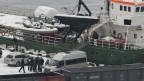 Die «Arctic Sunrise» am Tag ihrer Beschlagnahmung durch russische Behörden am 24. Oktober 2013.