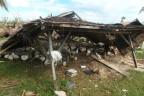 Die Hühnerfarm von Arturo Despi wurde bereits zum dritten Mal vernichet. Nach dem jüngsten Wirbelsturm bietet sich ein Bild der Zerstörung.