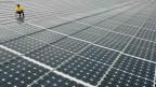 Solaranlage auf dem Dach eines Industriegebäudes in Bürstadt, Deutschland. Archivbild