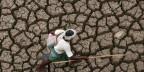 Das Klima spielt verrückt. Bild: Ein Schäfer geht über ein ausgetrocknetes Flussbett im südindischen Bundesstaat Andhra Pradesh.