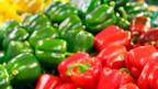 «Free Pepper» -  mit diesem Slogan wollen Bauernverbände, Züchter und Nichtregierungs- gegen das Patent von Syngenta vorgehen.