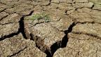Schon heute sind die Folgen der Klimaerwärmung vielerorts spürbar.