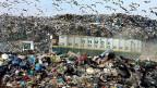 Eine Abfalldeponie im Westen Athens.
