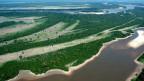 Luftaufnahme auf das Amazonasgebiet im Norden Brasiliens.