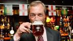 UKIP-Führer Nigel Farage hebt das Glas - auf seinen Wahlsieg bei den Gemeindewahlen.
