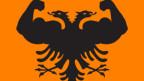 Logo der «Starke Partei», Kosovo.