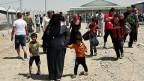 Etwa eine halbe Million Menschen sind aus der nordirakischen Stadt Mosul geflüchtet. Viele der Flüchtlinge in die etwa 80 Kilometer entfernte kurdische Stadt Erbil.