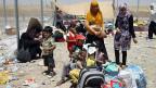 Zahlreiche Menschen sind nach der Übernahme durch die ISIS-Kämpfer aus der nordirakischen Stadt Mosul in die 80 Kilometer entfernte kurdische Stadt Erbil geflüchtet.