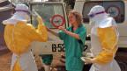 Mitarbeiter der Organisation «Ärzte ohne Grenzen» im Einsatz gegen das Ebola-Virus in Gueckedou, Guinea.