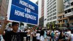 Ein Demonstrant an einer von zahlreichen Kundgebungen in Hongkong. Die Forderung: mehr Demokratie für Hongkongs Bevölkerung.