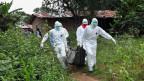 Krankenpfleger tragen den Leichnam eines Ebola-Opfers aus einem Haus.