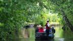 Nach jdem starken Regen füllen sich die Flüsschen und Kanäle im Spreewald mit ockerfarbenem Schlick.