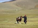 Unter den Steppen der Mongolei liegen grosse Vorräte an Gold, Kupfer und vor allem Kohle.