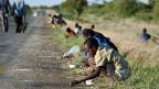 Dem UNO-Welternährungsprogramm fehlt  das Geld, um den Hunger in der Welt zu bekämpfen.
