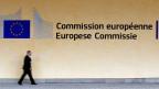 Das neue Kollegium von EU-Kommissionspräsident Juncker wird sieben Vizepräsidenten haben, die jeweils die Arbeit einer Reihe von Kommissaren leiten und koordinieren.