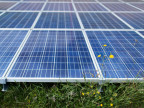 Solarzellen bei einem Bauernhaus in Rigi Scheidegg