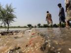 Überschwemmung in Indien und Pakistan zwingt die Menschen zur Fluch