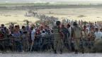Immer mehr syrische Kurden versuchen vor den Milizen der IS in die Türkei zu flüchten.