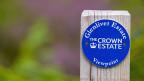 In Schottland gibt es viel Land, das zu «Crown Estate» gehört.