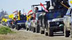 Irakische Streitkräfte auf dem Weg nach Tikrit.