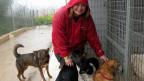 Die 40-jährige Afroditi Sideri engagiert sich beim Tierschutzverein des Athener Vororts Ilioupoli.
