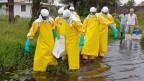 In Sierra Leone und Guinea werden täglich ca. zehn Ebola-Fälle gemeldet. Die Dunkelziffer dürfte aber höher sein.