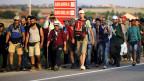 Mehrere tausend Migranten überschreiten zu Fuss täglich die Grenzen zwischen Serbien und Ungarn auf dem Weg in andere EU-Länder.