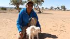 Navajo Jerry Lane lebt als Schafhirt auf Black Mesa. Er hat eben zwei verlorene Lämmer zurückgebracht. Seine Familie wird von ihrem Land vertrieben.