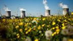 Linksumgekehrt: Frankreich will die Hälfte seiner Energie einsparen und geht auf Distanz zur Atomenergie.