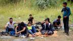 Seit Jahresbeginn wurden in Ungarn knapp 100'000 Flüchtlinge registriert. Das neue Gesetz ermöglicht es Ungarn, sie nach Serbien zurückschaffen. Bild: Flüchtlinge aus Afghanistan im Niemandsland zwischen Serbien und Ungarn.