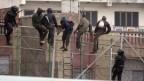 Flüchtlinge versuchen, den Grenzzaun zwischen Marokko und der spanischen Enklave Melilla zu überqueren (Februar 2015).