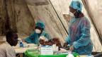 Im Spitaö von Kenema in Sierra Leone nehmen Gesundheitsarbeiterinnen Blutproben, um sie auf das Ebola-Virus zu testen.