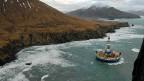Zu viel kostet dieses Öl - eine Beohstation von Shell vor Alaskas Küste.