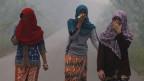 Südostasien keucht unter der Smogdecke wegen der Waldbrände in Indonesien.
