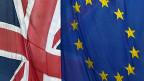 «Es braucht nicht immer mehr Europa, manchmal ist auch weniger Europa die Lösung», sagt der britische Premier David Cameron.