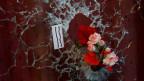 Blumen in einem Einschussloch erinnern an die Terroropfer in Paris.