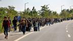 Die Mehrheit der Flüchtlinge aus dem Kriegsland Syrien haben vor allem den Wunsch nach einem «Leben wie ganz normale Menschen». Bild: Flüchtlinge unterwegs auf einer Strasse, die zur türkisch-griechischen Grenze führt.