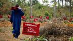 Die Lage in Guinea, Liberia und Sierra Leone werde auch im nächsten Jahr genau beobachtet, sagt die WHO; denn wirklich überwunden ist die gefährliche Seuche nicht. Bild: Ein Rotkreuz-Helfer ersetzt auf den Gräbern von Ebola-Opfern hölzerne Schilder, die von Termiten zerfressen wurden, durch Metallschilder.