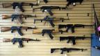 Kern des Plans des US-Präsidenten ist es, Käufer und Käuferinnen von Schusswaffen besser zu überprüfen.