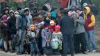 Europol weist darauf hin, dass zahlreiche Leute, die als Schlepper tätig sind, ihr Geld vorher mit Menschenhandel Geld verdient haben. Bild: Flüchtlinge, gestrandet auf einer unbewohnten, griechischen Insel.
