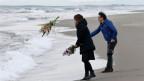 Blumen für die Tsunami-Opfer. Über 15'894 Menschen wurden getötet; 2'562 werden immer noch vermisst.
