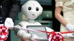 Vielleicht befreien die Roboter die Menschen auch vor unattraktiven Arbeiten, dem Toilettenputzen zum Beispiel.