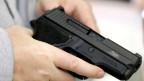 Schützenverbänden und Jägervereinen geht der Vorschlag zu weit.