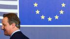 Die EU-Staats- und Regierungschefs sassen am Dienstag zum letzten Mal mit David Cameron zusammen. Das mussten offensichtlich auch sie erst verarbeiten. Wie sie das taten, dürfte Cameron gefreut haben.