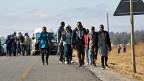 Simbabwe gegen Mugabe – das ganze Land streikt gegen den greisen Präsidenten. Bild: Gestrandete Pendler am Rand der Hauptstadt Harare.