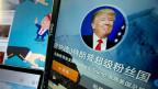 Die Trump-Fanseite von Blogger Wen hat inzwischen über 50'000 Mitglieder. Wen sagt: «Wenn es um Gewalt zwischen Schwarzen und der Polizei geht, steht Trump immer auf der Seite der Gesetzeshüter. Das ist ganz im Sinne der Chinesen, auch sie mögen Stabilität».